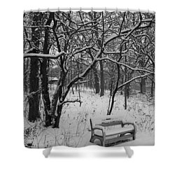 Cold Seat Shower Curtain by Lauri Novak