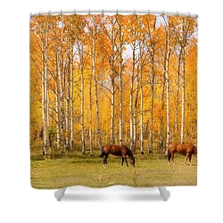 Colorful Autumn High Country Landscape Shower Curtain by James BO  Insogna