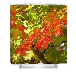 Colorful Fall Leaves Red Nature Landscape Baslee Troutman Shower Curtain by Baslee Troutman