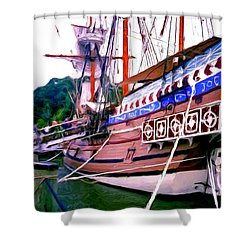 Columbus Day Celebration Shower Curtain by Methune Hively