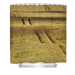 Cornfield Shower Curtain by Heiko Koehrer-Wagner