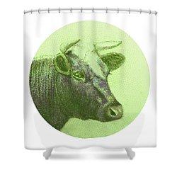 Cow II Shower Curtain by Desiree Warren