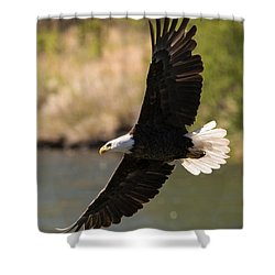 Cruising The River Shower Curtain by Mike Dawson