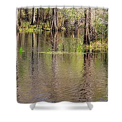 Cypresses Reflection Shower Curtain by Carol Groenen