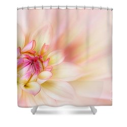 Dahlia Shower Curtain by John Edwards