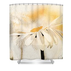 Daisyday - 56at01 Shower Curtain by Variance Collections