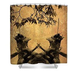 Dancing Trees Shower Curtain by Dave Gordon