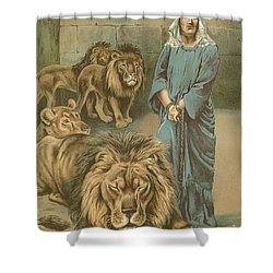 Daniel In The Lions Den Shower Curtain by John Lawson
