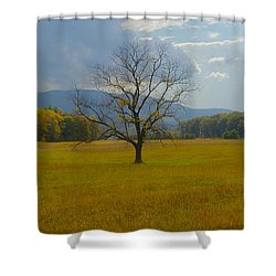 Dare To Stand Alone Shower Curtain by Michael Peychich
