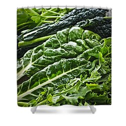 Dark Green Leafy Vegetables Shower Curtain by Elena Elisseeva