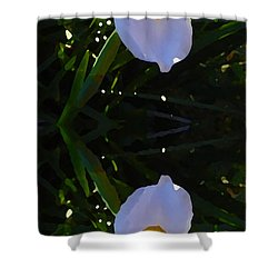 Day Lily Reflection Shower Curtain by Amy Vangsgard