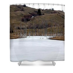 Deadwood Inlet Shower Curtain by Will Borden