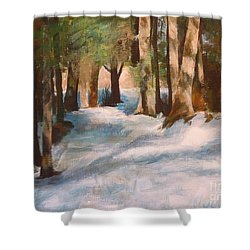 December Snow Path Shower Curtain by Claire Gagnon