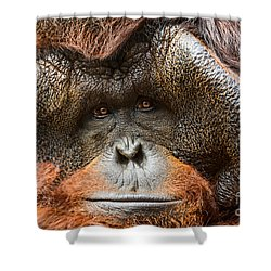 Deep In Thought Shower Curtain by Jamie Pham