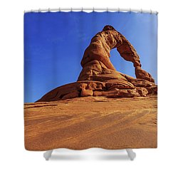 Delicate Perspective Shower Curtain by Chad Dutson