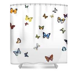 Delphine Shower Curtain by Amy Kirkpatrick
