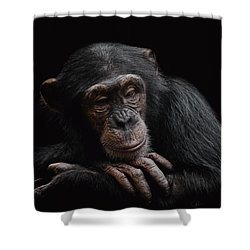 Depression  Shower Curtain by Paul Neville