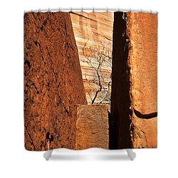 Desert Vise Shower Curtain by Mike  Dawson