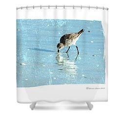 Dig In Shower Curtain by Marvin Spates