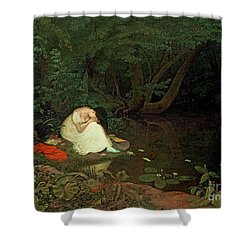 Disappointed Love Shower Curtain by Francis Danby