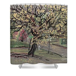 Dogwood Shower Curtain by Donald Maier