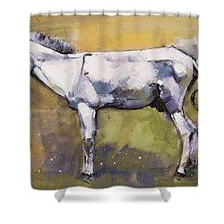 Donkey Stallion, Ronda Shower Curtain by Mark Adlington