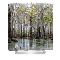 Down On The Bayou - Digital Painting Shower Curtain by Carol Groenen