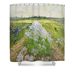 Down The Line Shower Curtain by Timothy Easton