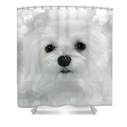 Dreams In White Shower Curtain by Morag Bates