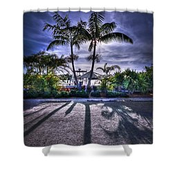 Dreamscapes Shower Curtain by Evelina Kremsdorf