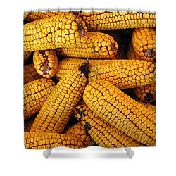 Dried Corn Cobs Shower Curtain by LeeAnn McLaneGoetz McLaneGoetzStudioLLCcom