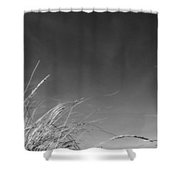 Dune Grass With Sky Shower Curtain by Michelle Calkins
