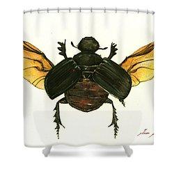 Dung Beetle Shower Curtain by Juan Bosco