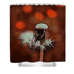 Dying Blowball Shower Curtain by Jutta Maria Pusl