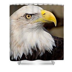 Eagle Power Shower Curtain by William Jobes