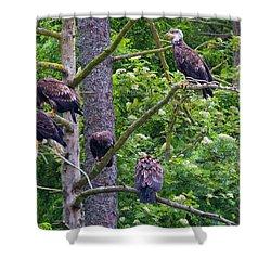 Eagle Tree Shower Curtain by Mike  Dawson