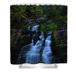 Early Morning Falls Shower Curtain by Karol Livote
