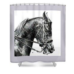 Effort Shower Curtain by Barbara Keith