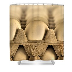 Eggs Shower Curtain by Evelina Kremsdorf