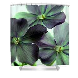 Energize Shower Curtain by Ed Smith