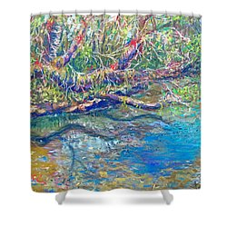 Estero River West Shower Curtain by Laurie Paci