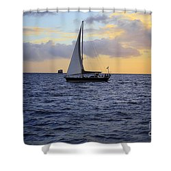 Evening Sail Shower Curtain by Cheryl Young