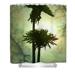 Ever After Shower Curtain by Amy Tyler