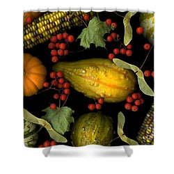 Fall Harvest Shower Curtain by Christian Slanec