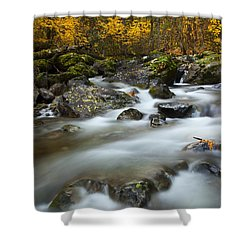 Fall Surge Shower Curtain by Mike  Dawson