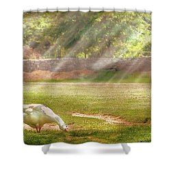 Farm - Geese -  Birds Of A Feather - Panorama Shower Curtain by Mike Savad
