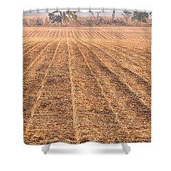 Farm Field Fog Shower Curtain by Steve Gadomski