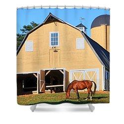 Farm Shower Curtain by Mitch Cat