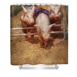 Farm - Pig - Getting Past Hurdles Shower Curtain by Mike Savad