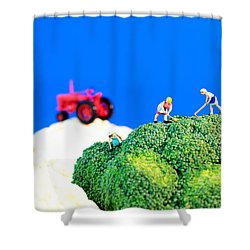 Farming On Broccoli And Cauliflower II Shower Curtain by Paul Ge